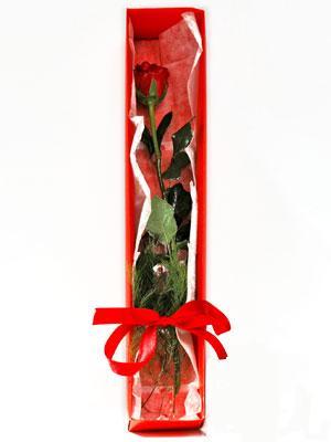 Bayburt yurtiçi ve yurtdışı çiçek siparişi  1 adet kutuda gül