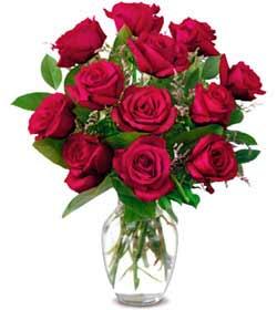Bayburt online çiçek gönderme sipariş  1 düzine kirmizi gül sevenlere özel vazo gülleri