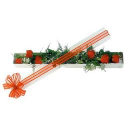 Bayburt çiçek siparişi sitesi  6 adet kirmizi gül kutu içerisinde