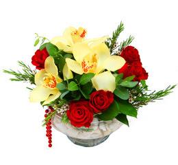 Bayburt çiçek gönderme  1 kandil kazablanka ve 5 adet kirmizi gül