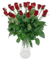 Bayburt çiçekçi telefonları  11 adet kimizi gülün ihtisami cam yada mika vazo modeli