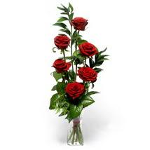 Bayburt çiçek siparişi sitesi  cam yada mika vazo içerisinde 6 adet kirmizi gül