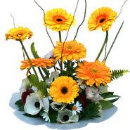 camda gerbera ve mis kokulu kir çiçekleri  Bayburt çiçekçi telefonları