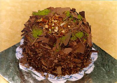 Çikolatali 4 ila 6 kisilik yas pasta  Bayburt çiçek gönderme sitemiz güvenlidir