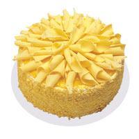 Muzlu pasta 4 ile 6 kisilik yas pasta  Bayburt çiçekçi telefonları