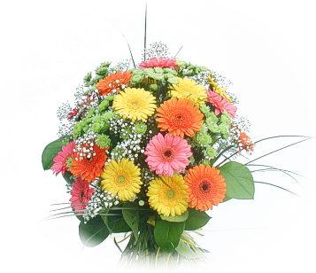 13 adet gerbera çiçegi buketi  Bayburt online çiçek gönderme sipariş