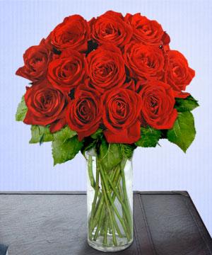 Anneme 12 adet cam içerisinde kirmizi gül  Bayburt çiçek siparişi sitesi