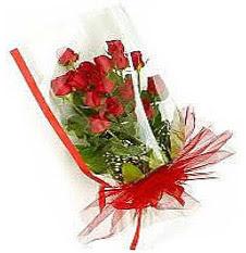 13 adet kirmizi gül buketi sevilenlere  Bayburt çiçek siparişi vermek