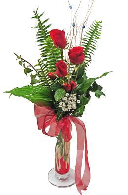Çiçek gönderin cam vazoda 3 gül çiçekleri  Bayburt çiçek siparişi sitesi