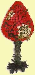 Bayburt çiçek gönderme  dügün açilis çiçekleri  Bayburt çiçek online çiçek siparişi