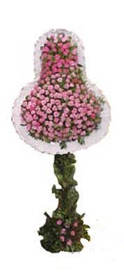 Bayburt ucuz çiçek gönder  dügün açilis çiçekleri  Bayburt internetten çiçek siparişi