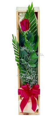 1 adet kutuda kirmizi gül  Bayburt çiçek gönderme sitemiz güvenlidir
