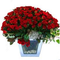 Bayburt çiçekçiler   101 adet kirmizi gül aranjmani