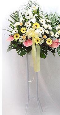 Bayburt online çiçek gönderme sipariş   perförje çiçegi dügün çiçekleri