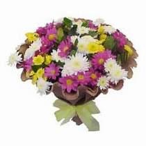 Bayburt çiçekçi telefonları  Mevsim kir çiçegi demeti