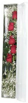 Bayburt çiçek siparişi sitesi   5 adet gülden kutu güller