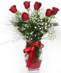 7 adet gülden cam içerisinde güller  Bayburt 14 şubat sevgililer günü çiçek