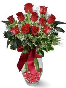 9 adet gül  Bayburt internetten çiçek satışı  kirmizi gül