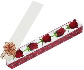 Bayburt internetten çiçek satışı  kutu içerisinde 5 adet kirmizi gül