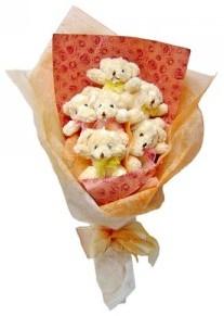 12 adet ayiciktan buket  Bayburt çiçek siparişi sitesi