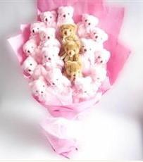 17 adet pelus ayicik buketi  Bayburt İnternetten çiçek siparişi