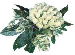 Bayburt internetten çiçek siparişi  9 Beyaz gül Özel kisiler için