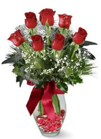 Bayburt internetten çiçek siparişi  7 adet kirmizi gül cam vazo yada mika vazoda