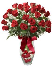 17 adet essiz kalitede kirmizi gül  Bayburt çiçek mağazası , çiçekçi adresleri