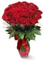 19 adet essiz kalitede kirmizi gül  Bayburt 14 şubat sevgililer günü çiçek