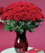 Bayburt çiçek online çiçek siparişi  11 adet Vazoda Gül sevenler için ideal seçim