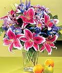 Bayburt çiçek mağazası , çiçekçi adresleri  Sevgi bahçesi Özel  bir tercih
