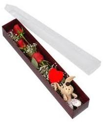 kutu içerisinde 3 adet gül ve oyuncak  Bayburt cicekciler , cicek siparisi