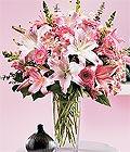 Bayburt çiçek yolla , çiçek gönder , çiçekçi   Kazablanka biçme vazoda