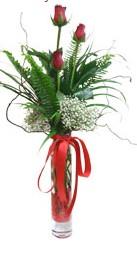 Bayburt çiçek siparişi sitesi  3 adet kirmizi gül vazo içerisinde