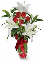 Bayburt çiçek siparişi vermek  5 adet kirmizi gül ve 3 kandil kazablanka