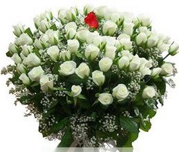 Bayburt internetten çiçek satışı  100 adet beyaz 1 adet kirmizi gül buketi