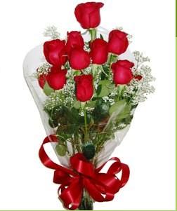 Bayburt uluslararası çiçek gönderme  10 adet kırmızı gülden görsel buket