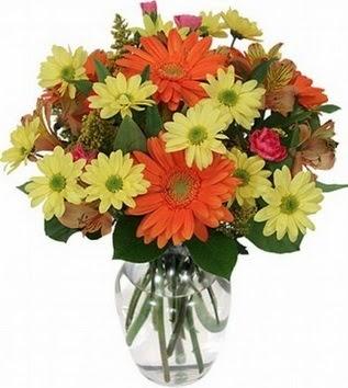Bayburt hediye sevgilime hediye çiçek  vazo içerisinde karışık mevsim çiçekleri