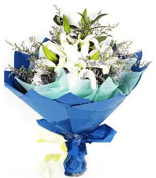 Bayburt anneler günü çiçek yolla  4 adet dal kazablankadan görsel buket