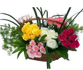 Bayburt ucuz çiçek gönder  35 adet rengarenk güllerden sepet tanzimi