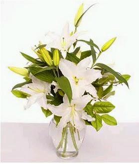 Bayburt çiçek gönderme  2 dal cazablanca vazo çiçeği