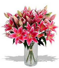 4 dal cazablanca görsel vazosu  Bayburt çiçekçi mağazası
