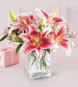 2 dal kazablanka görsel vazosu  Bayburt çiçek siparişi sitesi