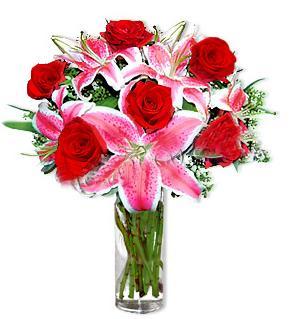 Bayburt çiçek yolla  1 dal cazablanca ve 6 kırmızı gül çiçeği