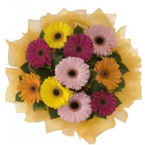 Bayburt İnternetten çiçek siparişi  11 adet karışık gerbera çiçeği buketi