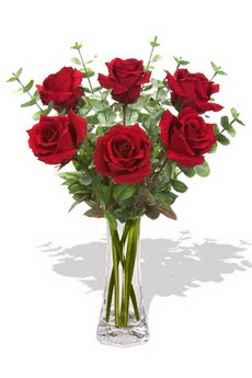 Bayburt çiçekçi mağazası  6 kırmızı gül vazosu