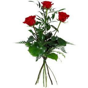 Bayburt uluslararası çiçek gönderme  3 adet kırmızı gülden buket