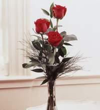 Bayburt internetten çiçek satışı  Vazoda 3 adet güzel gül