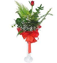 Bayburt anneler günü çiçek yolla  Cam vazoda masum tek gül