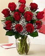 Sevgilime hediye 9 adet 1.ci kalite gül  Bayburt anneler günü çiçek yolla